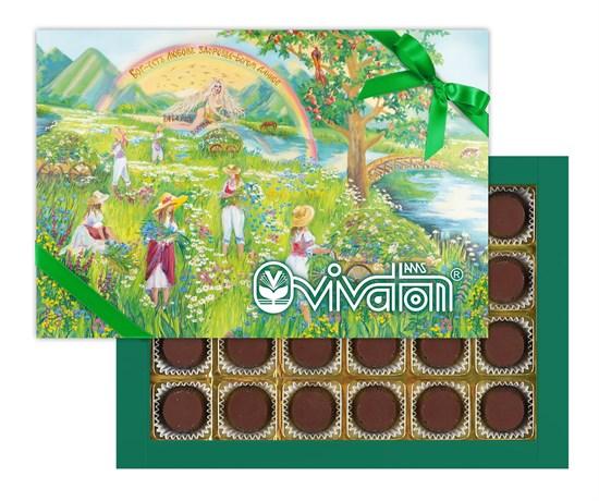 """Шоколадные конфеты (типа Ассорти) с желейной начинкой, с растительным экстрактом """"Виватон"""" (170 г) - фото 4821"""