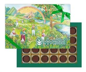 """Шоколадные конфеты (типа Ассорти) с желейной начинкой, с растительным экстрактом """"Виватон"""" (170 г)"""